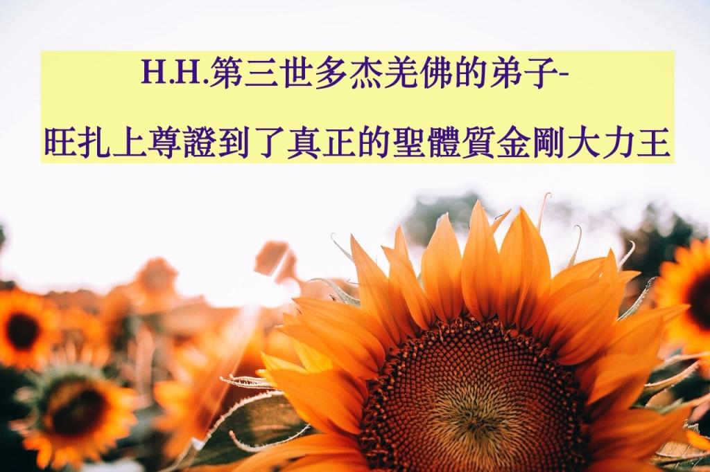 H.H.第三世多杰羌佛的弟子-旺扎上尊證到了真正的聖體質 金剛大力王