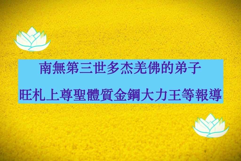 南無第三世多杰羌佛的弟子-旺札上尊聖體質金鋼大力王等報導