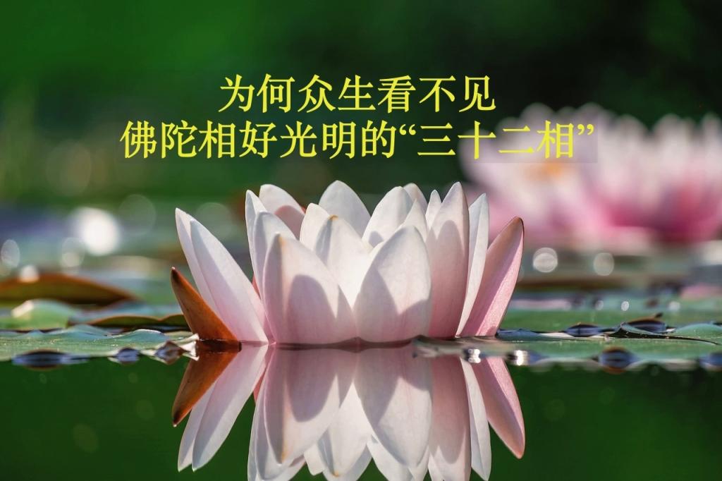 """【佛门观察】为何众生看不见佛陀相好光明的""""三十二相""""?"""
