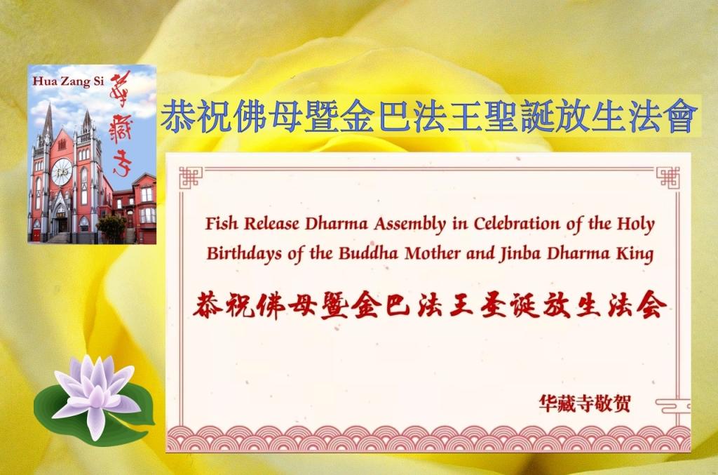恭祝佛母暨金巴法王聖誕放生法會 Fish Release in Celebration of the Holy Birthdays of Fomu and Jinba Dharma King